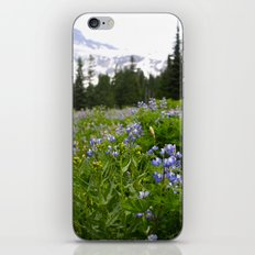 Meadow iPhone & iPod Skin