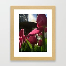 Flower Focus Framed Art Print
