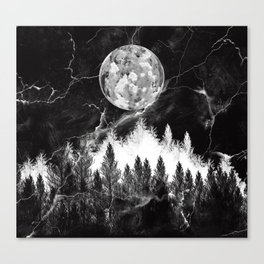 marble black and white landscape Canvas Print