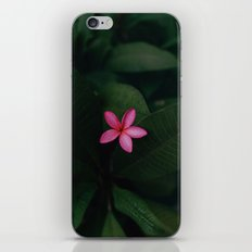Tropical Jungle Flower iPhone Skin