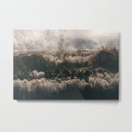 Sunrise backlighting wet trees after a misty dawn. Lyth Valley, Cumbria, UK. Metal Print