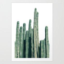 Cactus Line Art Print