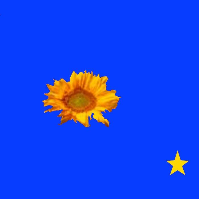 RAINING GOLDEN STARS YELLOW SUNFLOWERS BLUES Leggings