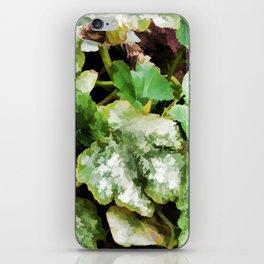 Zucchini plants iPhone Skin