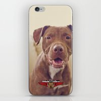 cookie iPhone & iPod Skins featuring Cookie by Pit Bulls for Life
