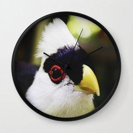 Weird Bird Wall Clock