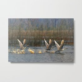 Three for Lift Off Metal Print