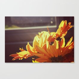 Orange Flowers Canvas Print