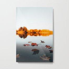 Autumn leaves floating on a lake Metal Print