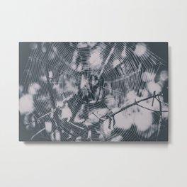 Spider webs Metal Print