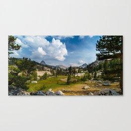 The Alpine Meadow Canvas Print