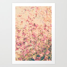 Vintage Pink Crabapple Tree Blossoms in the Sun Art Print