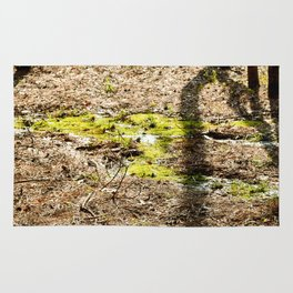 The Creek and the Moss Rug