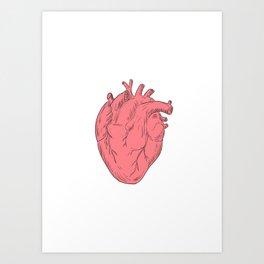 Human Heart Anatomy Drawing Art Print