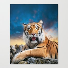 Tiger Sunset Canvas Print