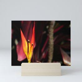 Tropical Blooms in Costa Rica Mini Art Print