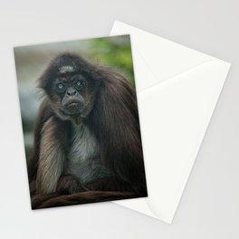 Mr Grumpy Stationery Cards