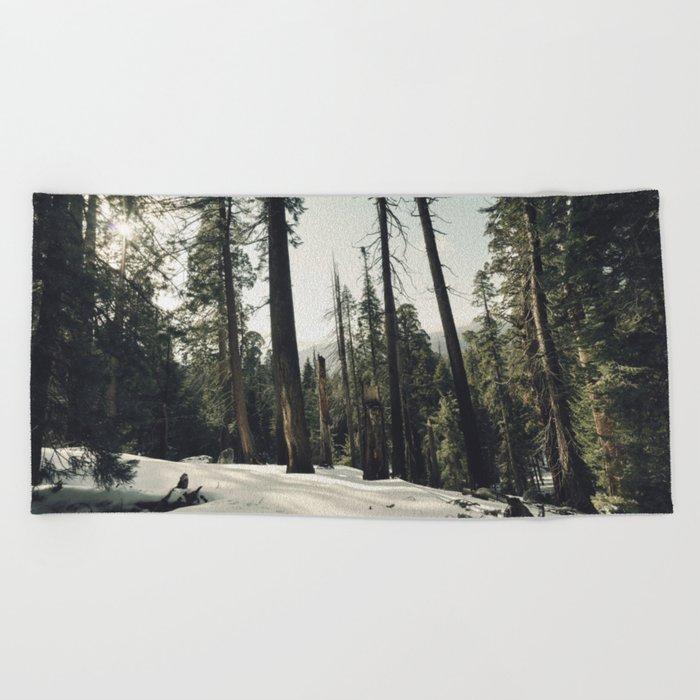 Winter Sequoia Forest Beach Towel