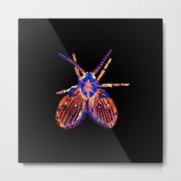 Drain Fly Inverted Metal Print