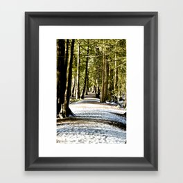 Running Path  Framed Art Print