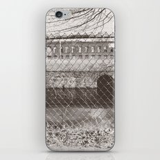 Beyond the Fence iPhone & iPod Skin