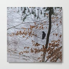 Crow in the mist Metal Print