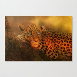 Waiting For The Night Canvas Print