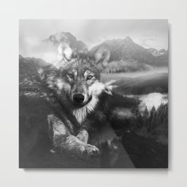 Mountain Wolf - black and white Metal Print