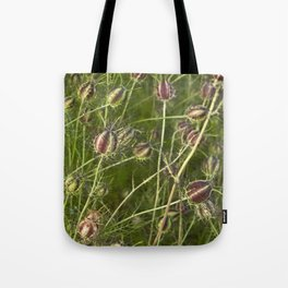 NIGELLA - Love-In-A-Mist Tote Bag