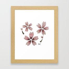 Spring Sakura 2018 Framed Art Print