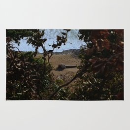 Landslide views Rug