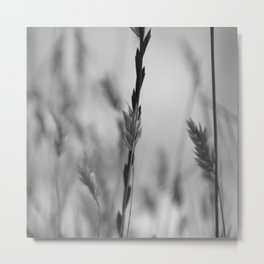 Weat Black And White Metal Print