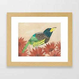 Great Barbet Watercolor Framed Art Print