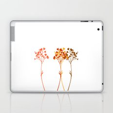Sensation d'automne Laptop & iPad Skin