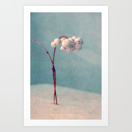 snowberries II Art Print