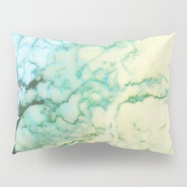 Abstract modern teal brown marble tree pattern Pillow Sham