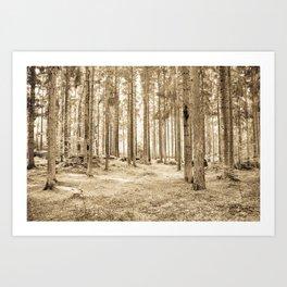 Tree Trunks III Art Print