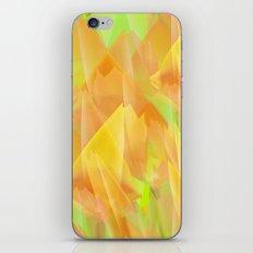 Tulip Fields #108 iPhone & iPod Skin