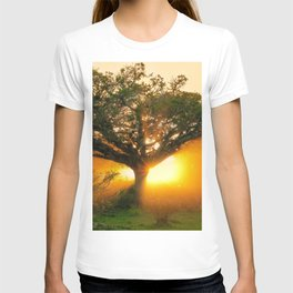 The Rebirth of Light T-shirt
