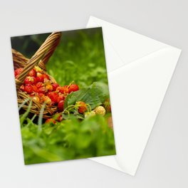 Red strawberries in a basket. Stationery Cards