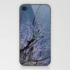 Plum tree EX iPhone & iPod Skin