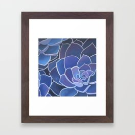 Purple Succulents Framed Art Print