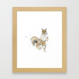 Two Squirrels Framed Art Print