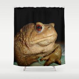 Common European Toad, Bufo Bufo Shower Curtain