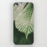 leaf iPhone & iPod Skins featuring Leaf by Errne