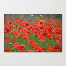 Poppy field 1820 Canvas Print