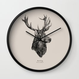 Red Stag [Cervus elaphus]  Wall Clock