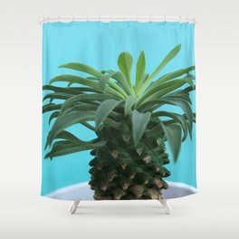 Euphorbia hypogaea(blue) Shower Curtain