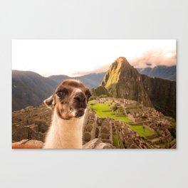 Llama #selfie Canvas Print
