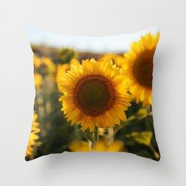 Sunflower's Season (II) Throw Pillow